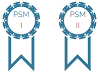 PSM I en PSM II badge 100x75